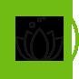 comprehensive-health-program-flower-pedals-icon_24